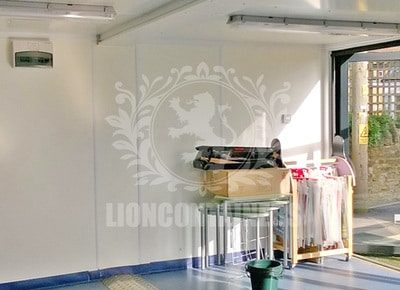 somersetcc-lion-10