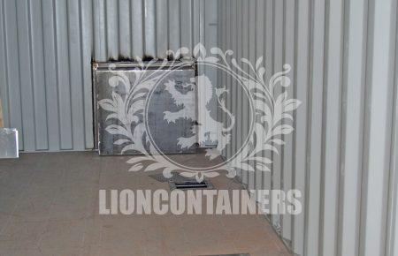 GEA-WIP-Lion-16.jpg