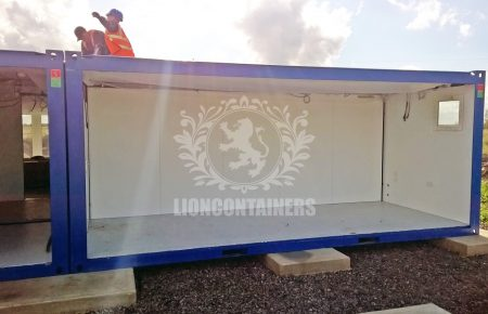 LG - Lion 12