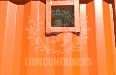 Vital-Lion-4.jpg