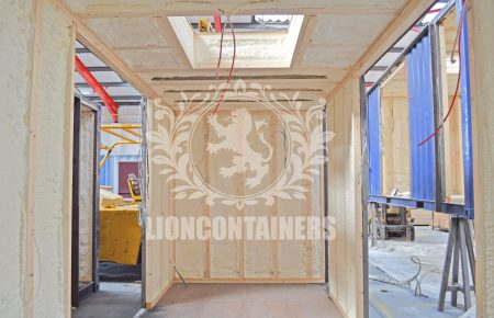 St.Thomas Moore - Lion 10