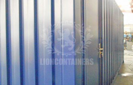OTS-Lion-11.jpg