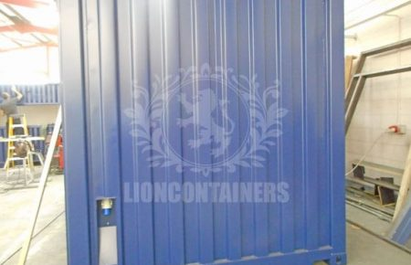 OTS-Lion-12.jpg